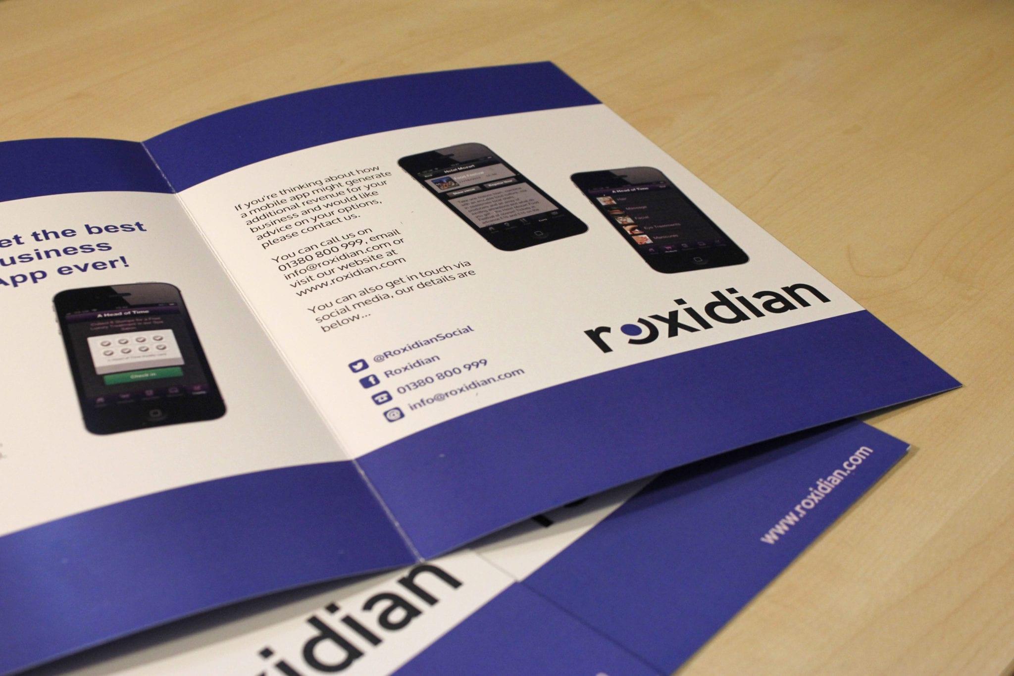design-and-print-of-promotional-materials-for-roxidian.jpg