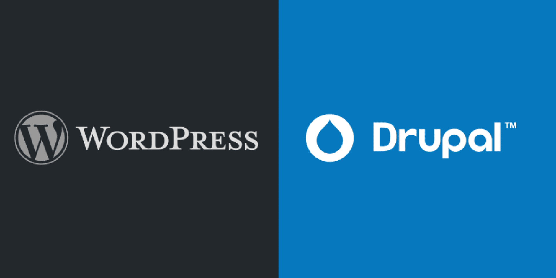 is-drupal-too-complicated-for-your-website-switching-to-wordpress-might-be-a-good-move-to-keep.png